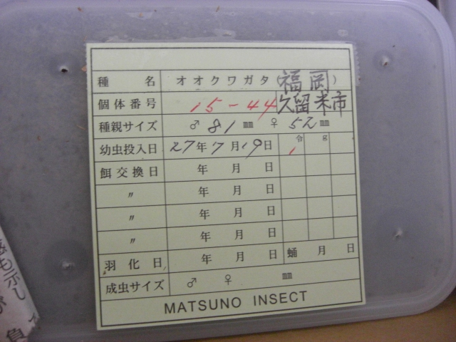 MATSUNO15-44.jpg