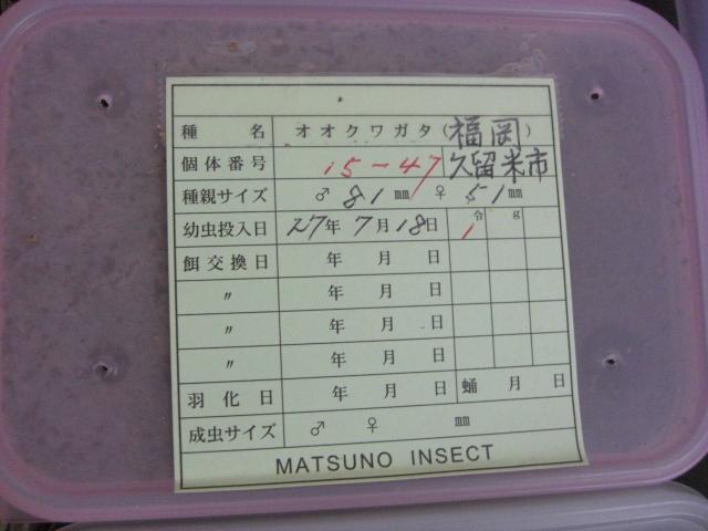 MATSUNO15-47.jpg