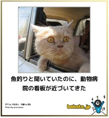 //blog-imgs-72-origin.fc2.com/m/u/r/murakumo1868/20155232.jpg