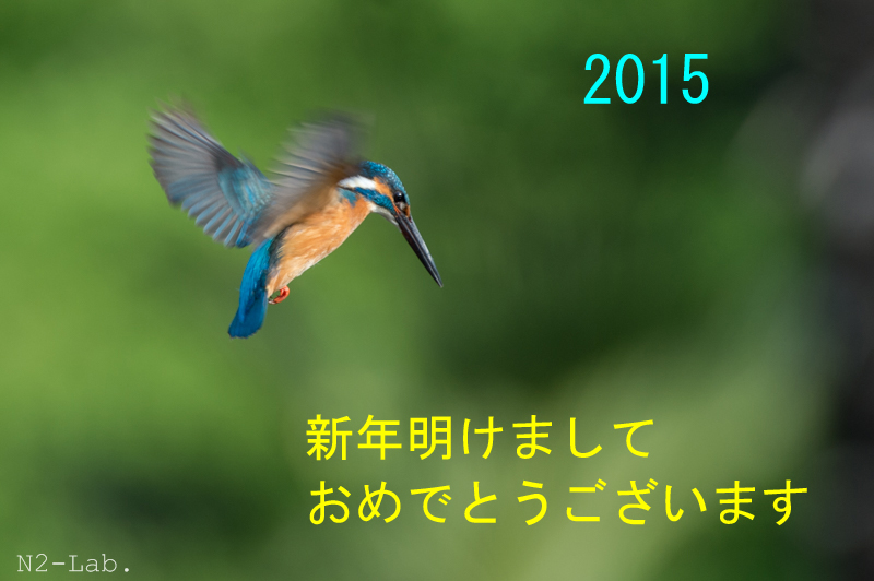 DSC_4812.jpg