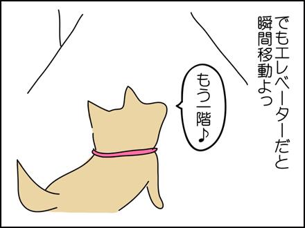 251エレベーター-3