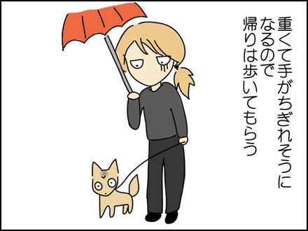 257雨でびちょびちょ-2
