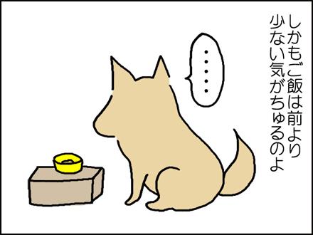 262食欲-3-3