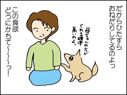 262食欲-4-4