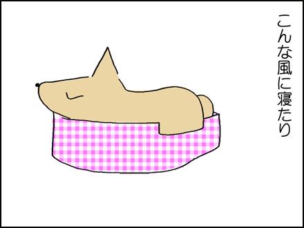 280犬ベッド-2-2