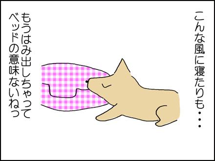 280犬ベッド-4-4