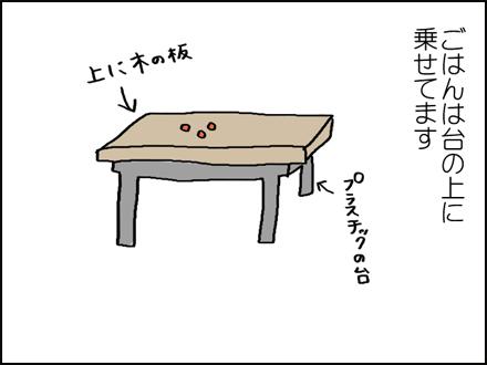283ヒヨちゃん-2-2