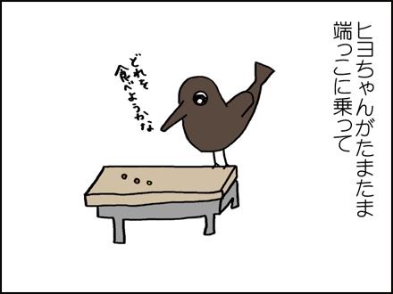 283ヒヨちゃん-3-3