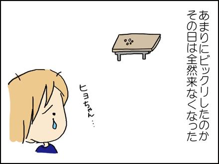 283ヒヨちゃん-7-7