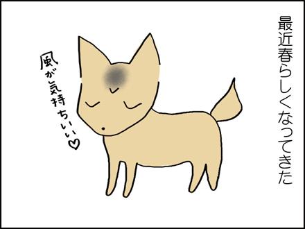 289抜け毛-1-1