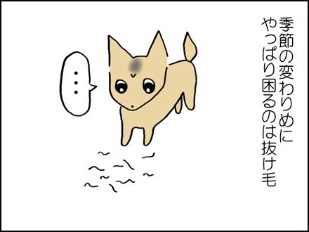 289抜け毛-2-2