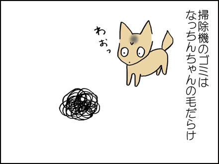 289抜け毛-3-3