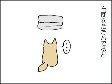 291布団ひけよ-1-1