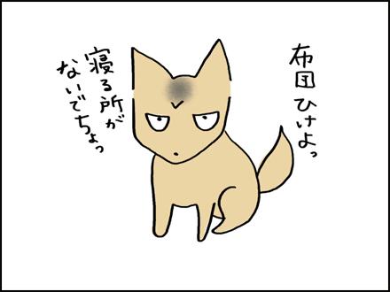 291布団ひけよ-3-3