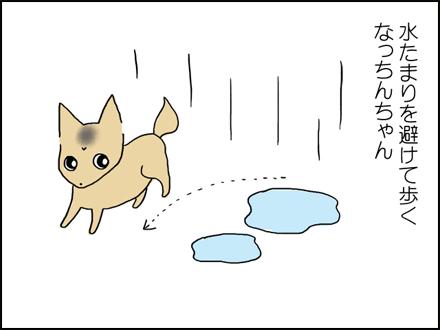 307雨の日-2-2