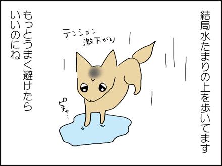 307雨の日-4-4