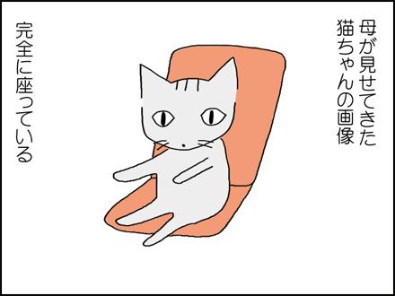 308猫のように-1-1