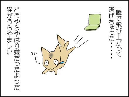 308猫のように-4-4
