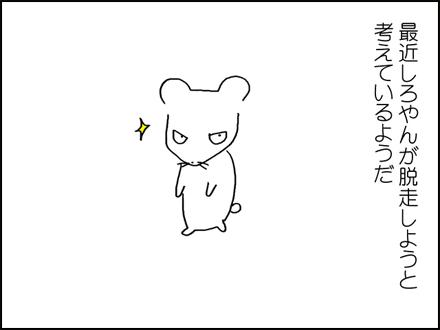 309しろやん脱走-1-1