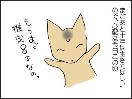 316白い毛-4-4