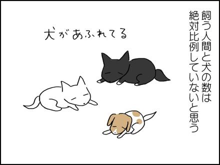 320保護犬いっぱい-6-6