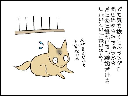 335ひなたぼっこ-4-4