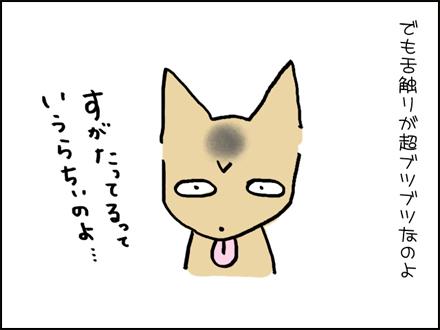 336お菓子作り-4-4