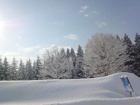 2015冬