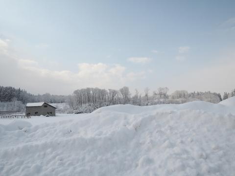 2015冬2