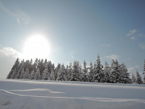 2015冬12