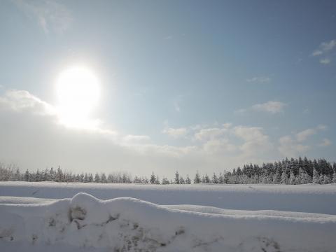 2015冬11