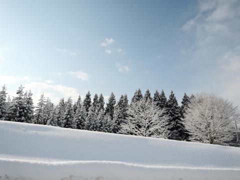 2015冬13