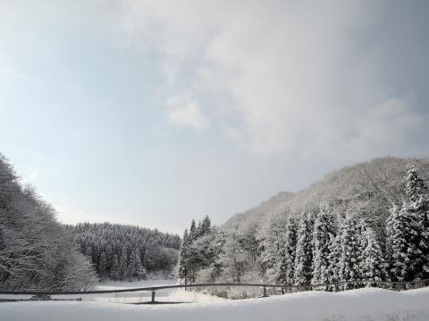 2015冬14