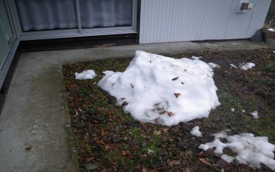やっとここまで減った雪