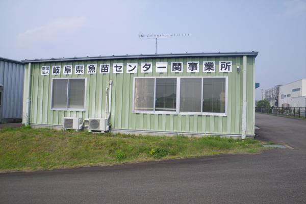 関魚苗センター