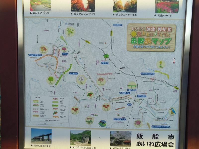 1月8日 飯能駅 飯能 元加治 地図