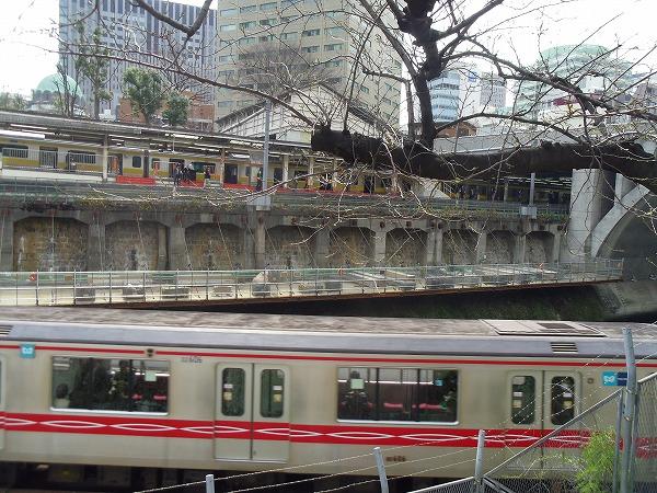 御茶ノ水 桜 3月23日
