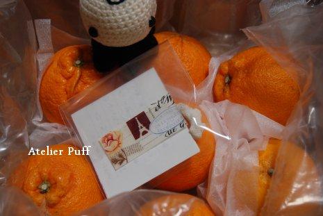 orange1-4.jpg