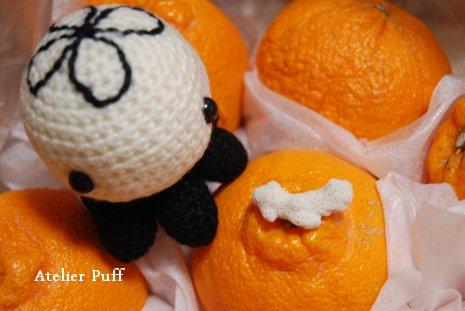 orange1-5.jpg