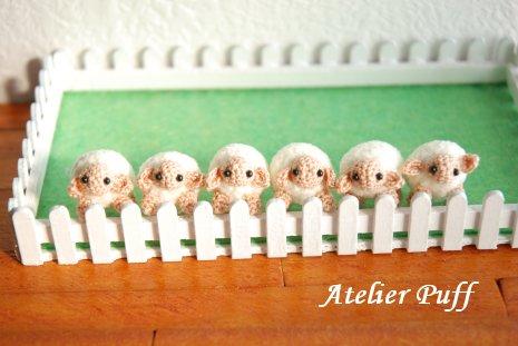 sheep1-2.jpg