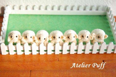 sheep1-3.jpg
