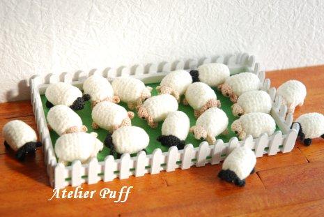 sheep1-4.jpg