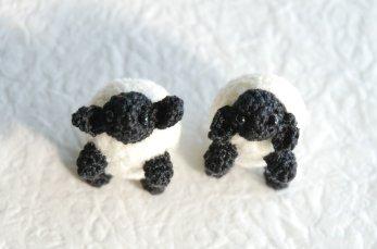 sheep1-5.jpg