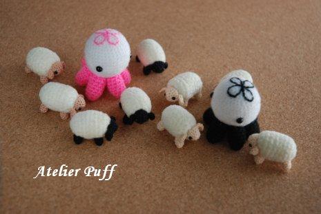 sheep1-8.jpg