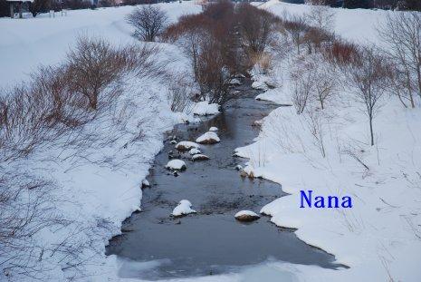 winter1-3_20150115192132e00.jpg