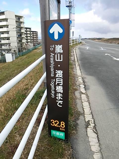 木津川マラソン5