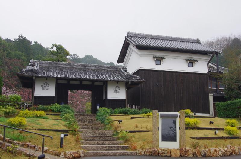 桜 石上神宮 レーブ1