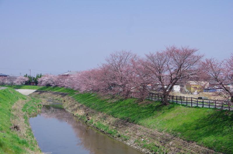 西の京 秋篠川