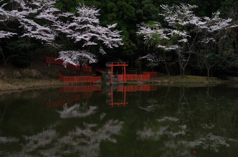 桜井 三輪山の辺