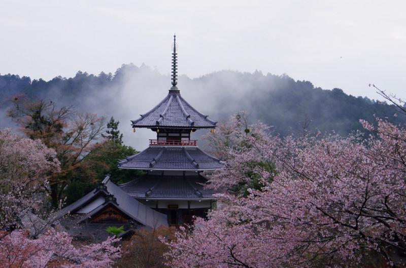 吉野山 金峯山寺